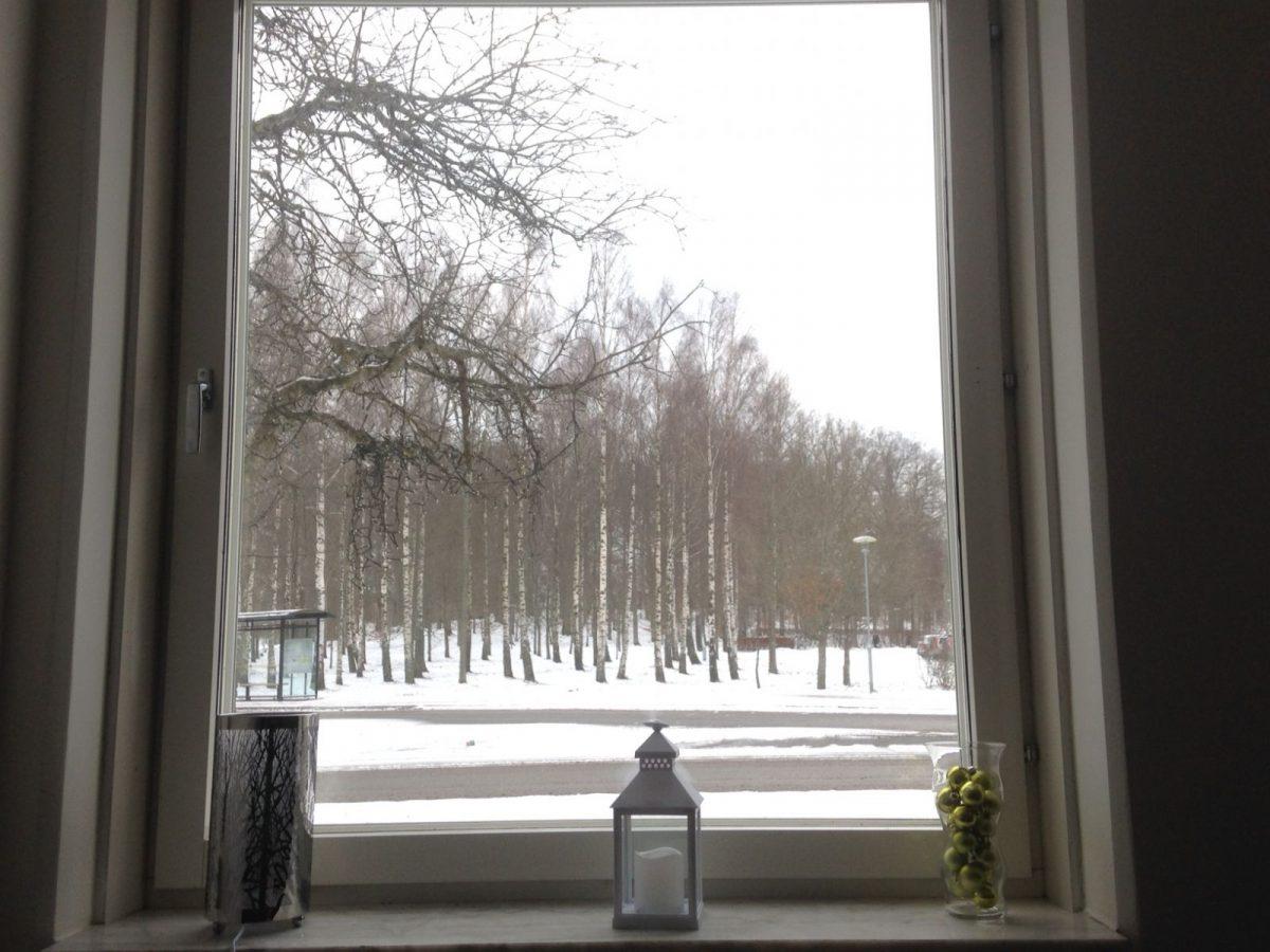 Grau ist die neue Sonne
